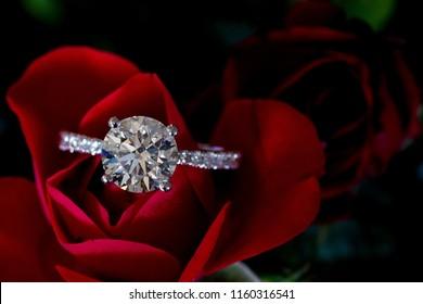 Platinum Diamond Ring On Red Rose (Hearts & Arrows)