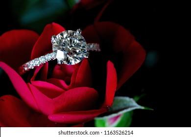 d2681b91d5b7 Platinum Diamond Ring On Red Rose