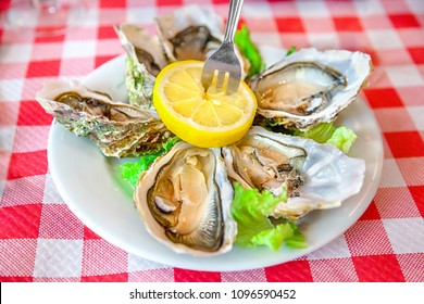 A platter of fresh oysters