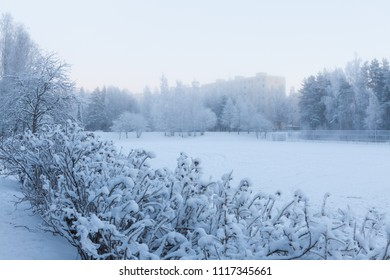 Play field at winter