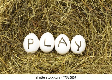 play or start concept with eggs on straw or hey