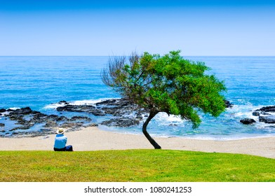 Playa de Calahonda, Mijas, Costa del Sol Occidental, Malaga, Andalusia, Spain, Iberian Peninsula