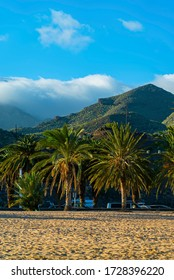Playa de Las Teresitas with palms and mountains. Famous beach on the north of Tenerife island, near Santa Cruz. Only one beach with the golden sand from Sahara desert. Canary Islands, Spain.