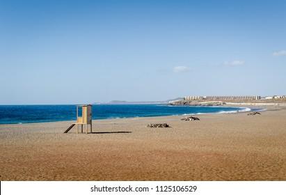 Playa de Tejita sand beach with nobody, Tenerife island. Canary islands, Spain.