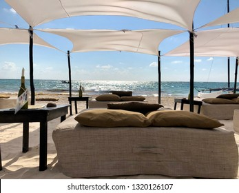 Playa del Carmen, Mexico - February 06 2019: private beach club on the beach equipped with straw beds and umbrellas in the Caribbean sea in Mexico with palm trees and white sand