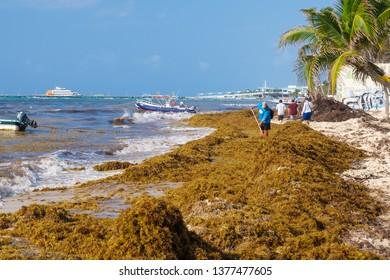 Playas Images, Stock Photos & Vectors | Shutterstock