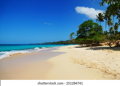Playa rincon beach, Samana, Dominican republic