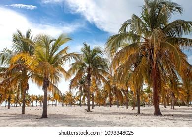 Playa Serena in Cayo Largo, Cuba