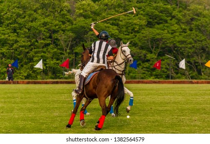 Players playing a polo match in lush green ground with their horses.