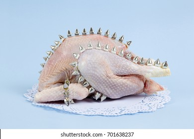 playful mash up using a chicken and punk spikes on a blue background. Minimal color still life and quirky photography