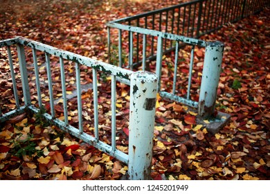 Playground Gate Paint Fallen Leaf Brown Skyblue Fence