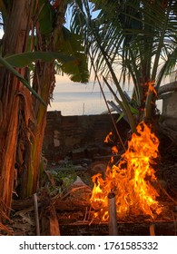 Playing behind the house with a view of the sea, while warming yourself with fire, and surrounded by banana trees whose fruit can be eaten immediately.