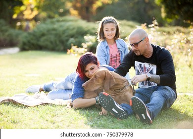 Playing with a dog in the park. Animal lovers. Mother, father, daughter and their dog