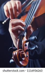 Playing the violin. Musical instrument with performer hands