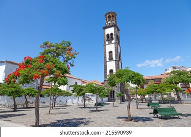 The plaza de la iglesia in santa cruz