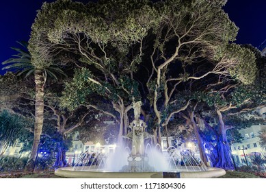 Plaza Gabriel Miro square. Fountain sculpture and giant rubber tree beautifully blue illuminated at night. This place is famous, most beautiful in spanish resort city of Alicante. Costa Blanca. Spain