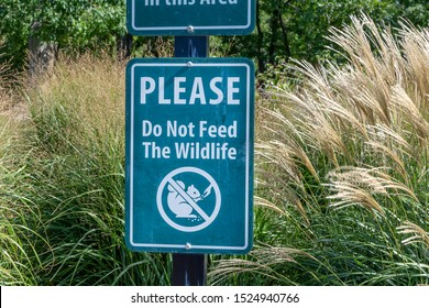 Please Do Not Feed the Wildlife Sign
