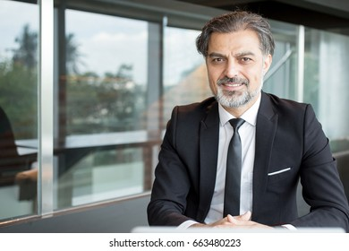 Pleased handsome entrepreneur sitting at table