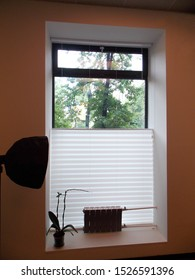 Pleated blinds XL Coulisse, white color, with 50mm fold closeup in the window opening in the interior. Home blinds - modern top down bottom up privacy shades on apartment windows.