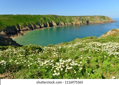 Plemont Bay, Jersey, U.K. Idyllic coastline in Spring.