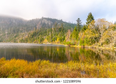 Plesne Lake and Plechy Mountain in autumn. Sumava National Park, Czech Republic.