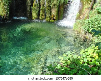 Plitvice Lakes Area. Croatia. 06.16. 2019. Panorama of a clear, transparent surface of a mountain lake, through which water you can see the bottom covered with plants and old trees.