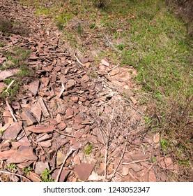 Plot of territory with geological fragments - schist in Krivoy Rog in Ukraine