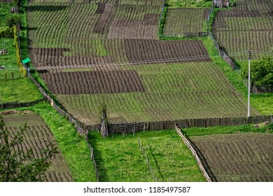 Plots of agricultural land. Brosteni is a mountain village in Suceava, Bucovina, Romania.
