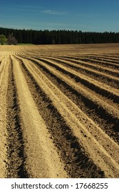 Ploughed field with forest behind