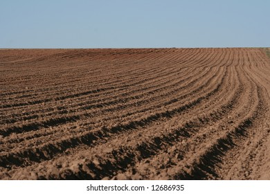 The ploughed ground and the blue sky in the spring afternoon