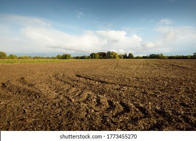 Gepflügtes landwirtschaftliches Feld unter dem dramatischen Himmel, Traktorstrecken, Bodenstruktur, Nahaufnahme. Landschaftsszene. Landwirtschaft und Nahrungsmittelindustrie, alternative Energie und Produktion, Umweltschutz