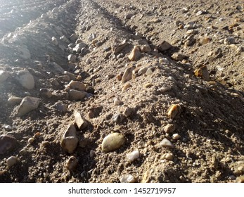 Plowed agricultural land, furrows. Reflections of the sun at the end of the day after the rain on dry ground with stones. Rural landscape to the horizon without sowing. European agriculture, Spain.