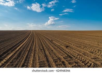 Plowed brown field under blue sky