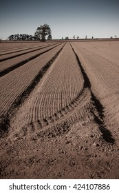 plowed and crop drilled field with distant trees on horizon line