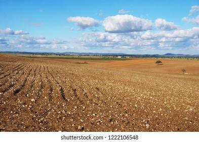 plowed field, Alentejo region, Portugal