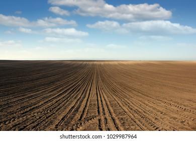 plowed field farmland landscape spring season
