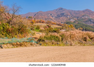 Plowed field in front of grave site on sunny day on mountainside covered with trees in autumn colors.