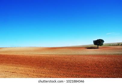 plowed field on Alentejo region, Portugal