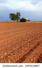 Plowed field on the Texas high plains
