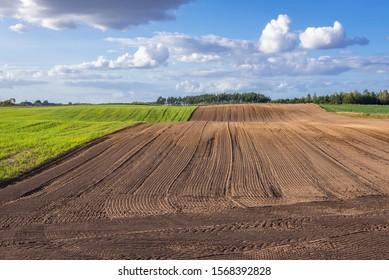 Plowed field in rural area of Nowe Miasto County in Poland