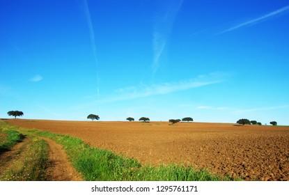 plowed field at south of Portuga, alentejo regionl