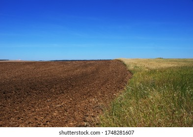 Plowed field at south of Portugal