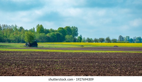 Plowed field in spring. An old house in the middle of the field.