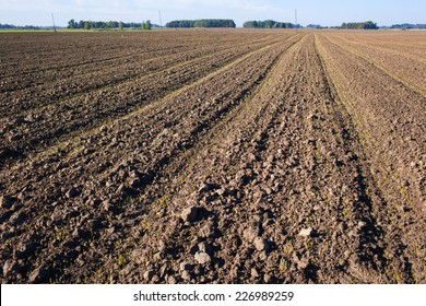 plowed field with tractor traces in spring time, farm soil background