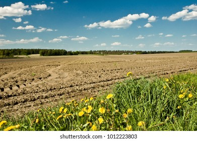 Plowed field with tractor tracks on sunny day in spring; Agricultural landscape; Soil management; Dandelion; North German Plain