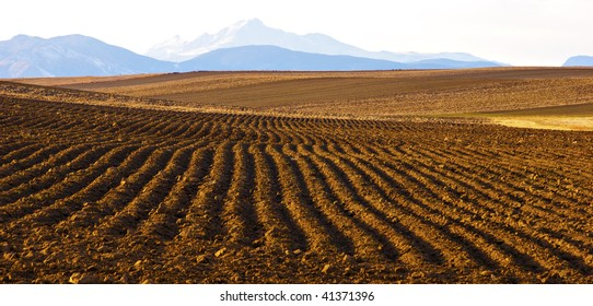 Plowed field with view of distant Long's Peak in Colorado in Winter