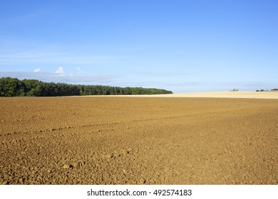 a plowed field with woodland under a blue sky in autumn in the yorkshire wolds