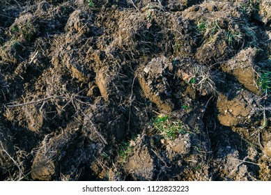 Plowed land close-up