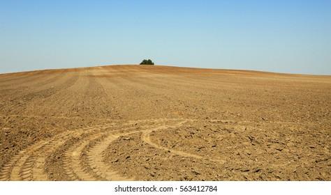 plowed land, summer