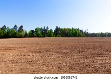 plowed and prepared for sowing a new crop of soil on the field, a landscape with trees and sky